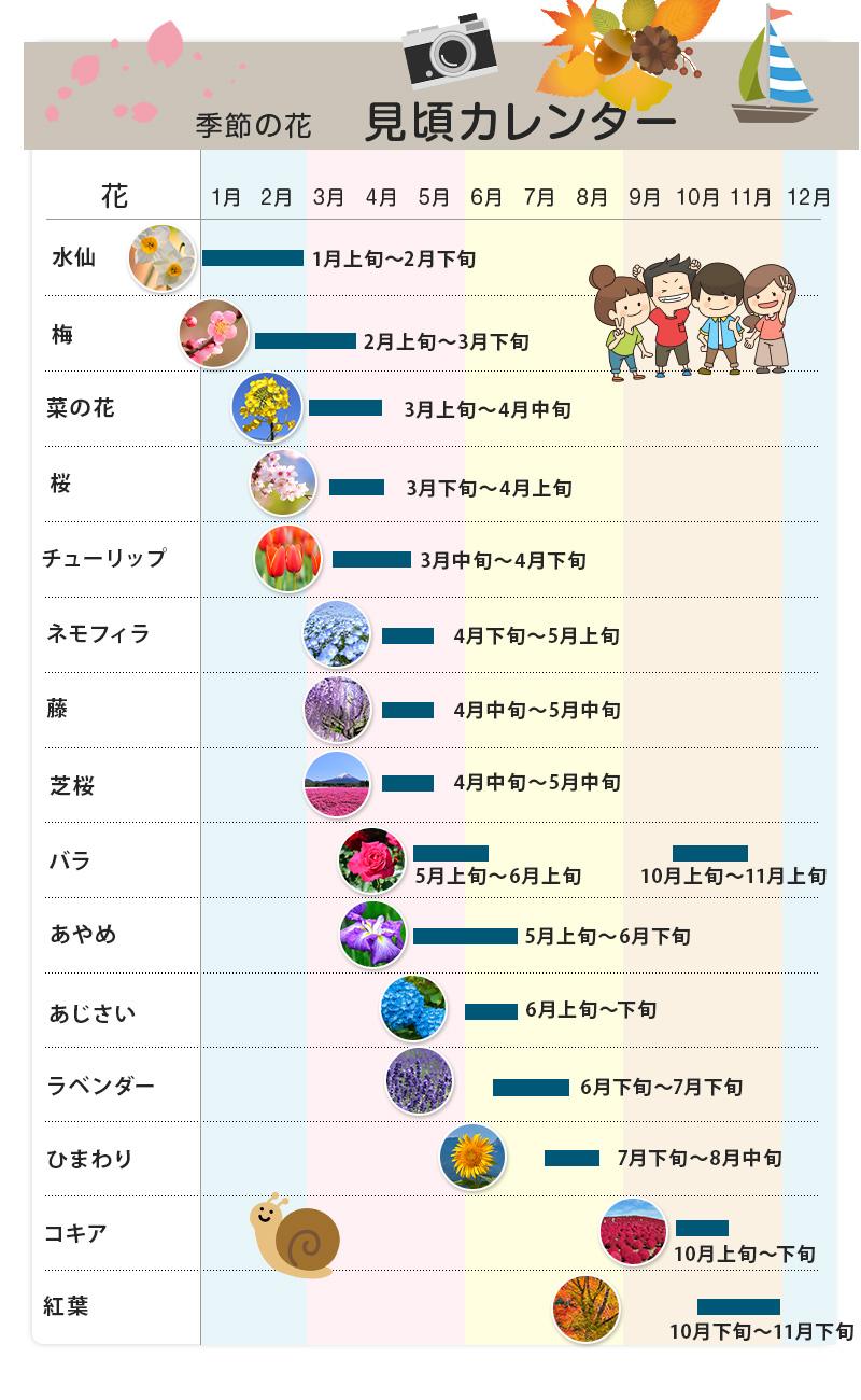 季節の花 年間カレンダー