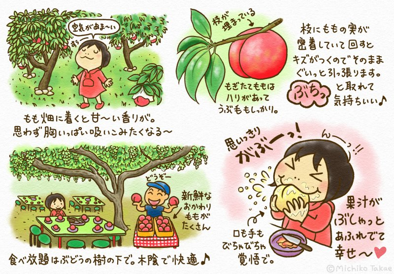 【たかえみちこのバス旅レポ】やまなしの夏!明野ひまわり畑&桔梗信玄餅詰め放題♪旬のフルーツ狩り