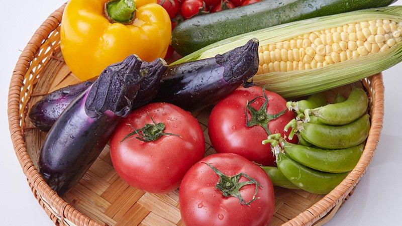 収穫体験 野菜イメージ