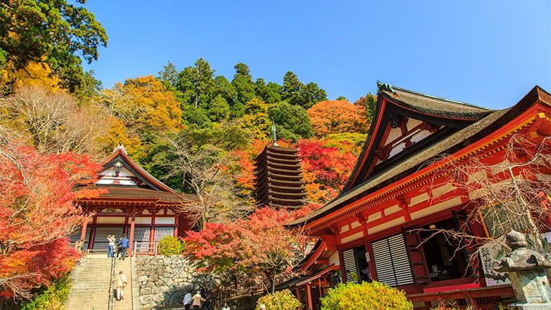談山神社 紅葉